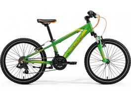 Dviratis Merida MATTS J.20 2018 green