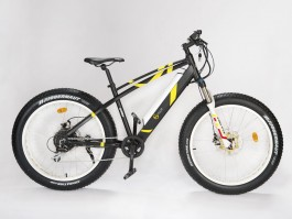 Dviratis GEOBIKE Big Apple S 26""